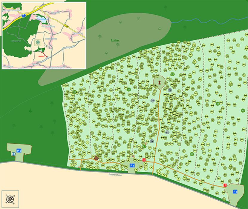 Waldfriedhof Schönburger Land - Friedhofskarte